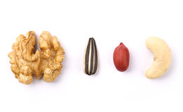Collection of Nuts Stock Images