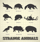 Strange Animal Silhouettes Stock Photo