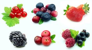 Collection Of Berries Stock Photos