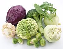 Collection Of Different Varieties Of Cabbage Royalty Free Stock Photo