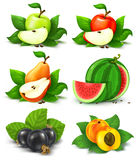 Collection Of Fruits And Berries With Green Leaves Stock Photos