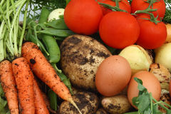 Collection Of Organic Vegetables And Eggs Stock Photos