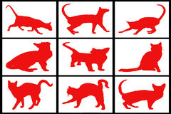 Collection Of Red Cats Royalty Free Stock Photography