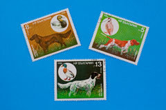 Collection of old postage stamps Royalty Free Stock Images