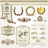 Collection of olive elements Royalty Free Stock Photography
