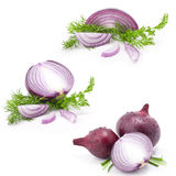 Collection of onions Stock Image