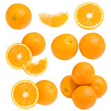 Collection of orange Royalty Free Stock Photos