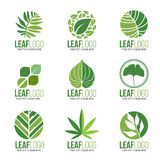 Collection Of Organic Green Leaf  Logo Symbols Vector Design Stock Image