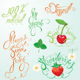 Collection of organic and juice signs, elements, calligraphic. Phrases: 100% natural, always sweet and juice, all organic, strawberry, sweet cherry, etc Royalty Free Illustration