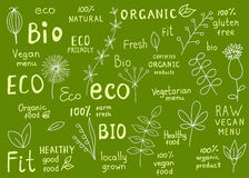 Collection of 100% organic, natural, bio, farm, eco, food label. Set of organic, fit, natural, fresh, bio, gluten free, raw, eco, healthy food labels. Retro royalty free illustration