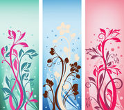 Collection of  ornate color banners Royalty Free Stock Photography