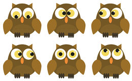 Collection of 6 owl characters Royalty Free Stock Photos