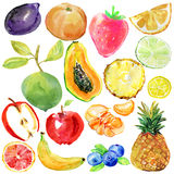 Collection of painted watercolor Set of fruits. Watercolor illustration Royalty Free Stock Photography
