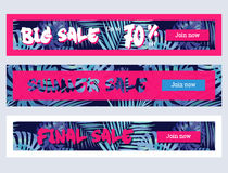 Collection of palm leaves background banner. EPS 10 Royalty Free Stock Photos