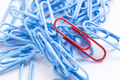 Collection of paperclips in various colours Stock Image