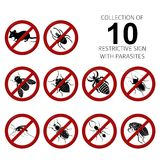 Collection of 10 parasites. Vector Collection of image of 10 parasites Stock Images