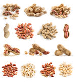 Collection of peanuts royalty free stock photography