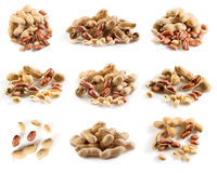 Collection of pecan nuts composition stock images