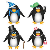 Collection of penguins on white background. A set of penguins in different styles of clothing in warm hat and Sharia, youth, Lord, lady Stock Illustration