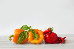 Collection of peppers. Stock Image