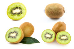 Collection of perfectly fresh kiwi fruit Royalty Free Stock Images