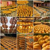 Collection of persimmons Royalty Free Stock Image