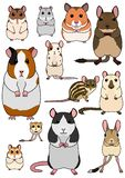 Collection of pet rodents. Collection of breeds of mice and rats for pets on white background stock illustration
