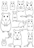 Collection of pet rodents line art. Collection of breeds of mice and rats for pets on white background stock illustration
