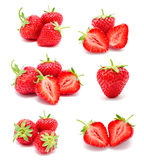 Collection of photos perfect ripe strawberry Royalty Free Stock Image
