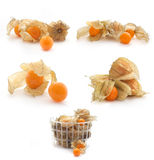 Collection of Physalis isolated on white Stock Photo