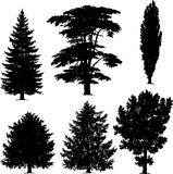 Collection of pine trees royalty free illustration