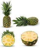 Collection pineapple fruit whole, cut in half with green leaves stock images
