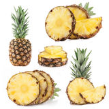 Collection of pineapple fruits Royalty Free Stock Photography