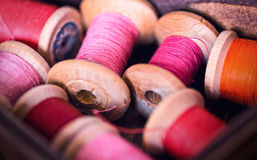 Collection of pink red color spools  threads  arranged in a grunge wooden box Stock Image