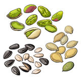 Collection of pistachio, sunflower and pumpkin seeds Stock Photography