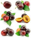 Collection of plum fruits with green leafs Stock Images