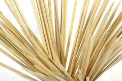 Collection of Pointed Wood Sticks Used as Skewers Royalty Free Stock Images