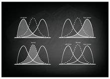 Collection of Positve and Negative Distribution Curve on Chalkboard Stock Image