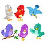 The collection pretty birds with different color and posing vector illustration