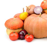 Collection pumpkin Royalty Free Stock Images