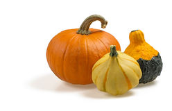 Collection of pumpkins Stock Photo