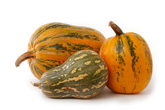Collection of Pumpkins stock images