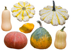 Collection of Pumpkins and squash isolated on white background Stock Image