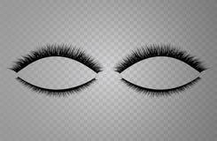 Collection réaliste de vecteur de mèches fausses L'illustration à la mode de mode pour le paquet de mascara ou les produits de be illustration de vecteur