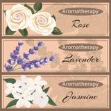 Collection réglée d'Aromatherapy Photographie stock libre de droits