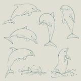 Collection réglée de dauphin Images stock
