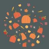 Collection réglée par potirons d'Autumn Concept Vegetables And Fruits de récolte Photo stock