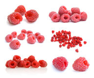 Collection of raspberries images Royalty Free Stock Photography