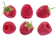 Collection of raspberry isolated on white background