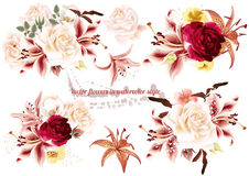 Collection of realistic  flowers roses and lilies. Collection of  beautiful vector rose  flowers in watercolor style Stock Photo